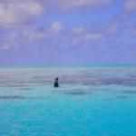 ⑤ またまたパラオへ 11月~ダイビング2~【志乃】