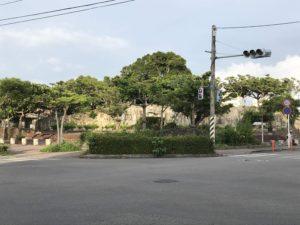 ②石垣島初ダイビング&観光~石垣島での食事&元気クール~