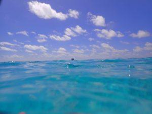 【sea lady】パラオ水上コテージで優雅なひとときを / ハワイ、グアムもいいけど、パラオでのんびりお勧めホテル