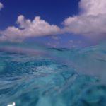 【パラオ】sea lady 3 もはやパラオだけ?!パラオダイビング~わがままダイビング~